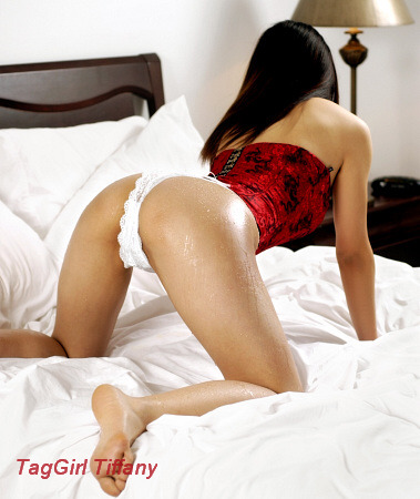Escorts swallow toronto